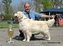CAC VRŠAC 2006 - Best In Show